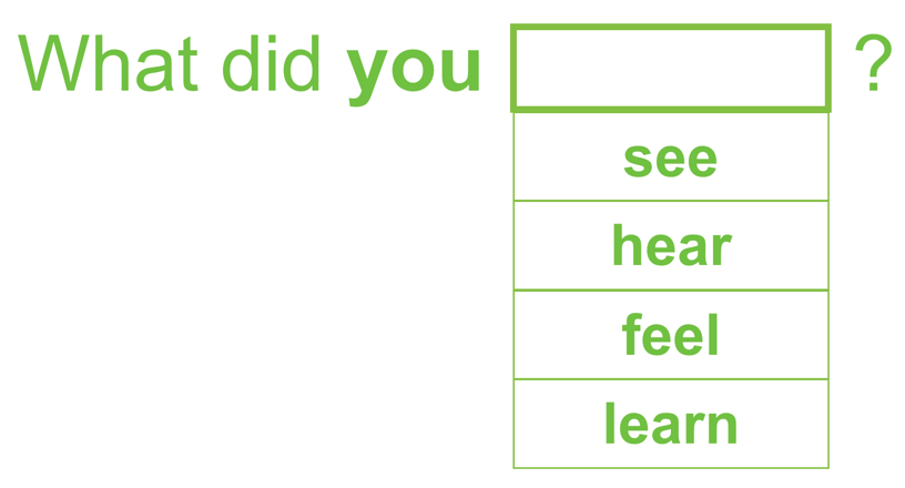 What did you _____________? (see, hear, feel, learn)